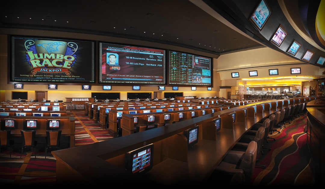Las Vegas Sportsbook Jump In The Action Station Casinos